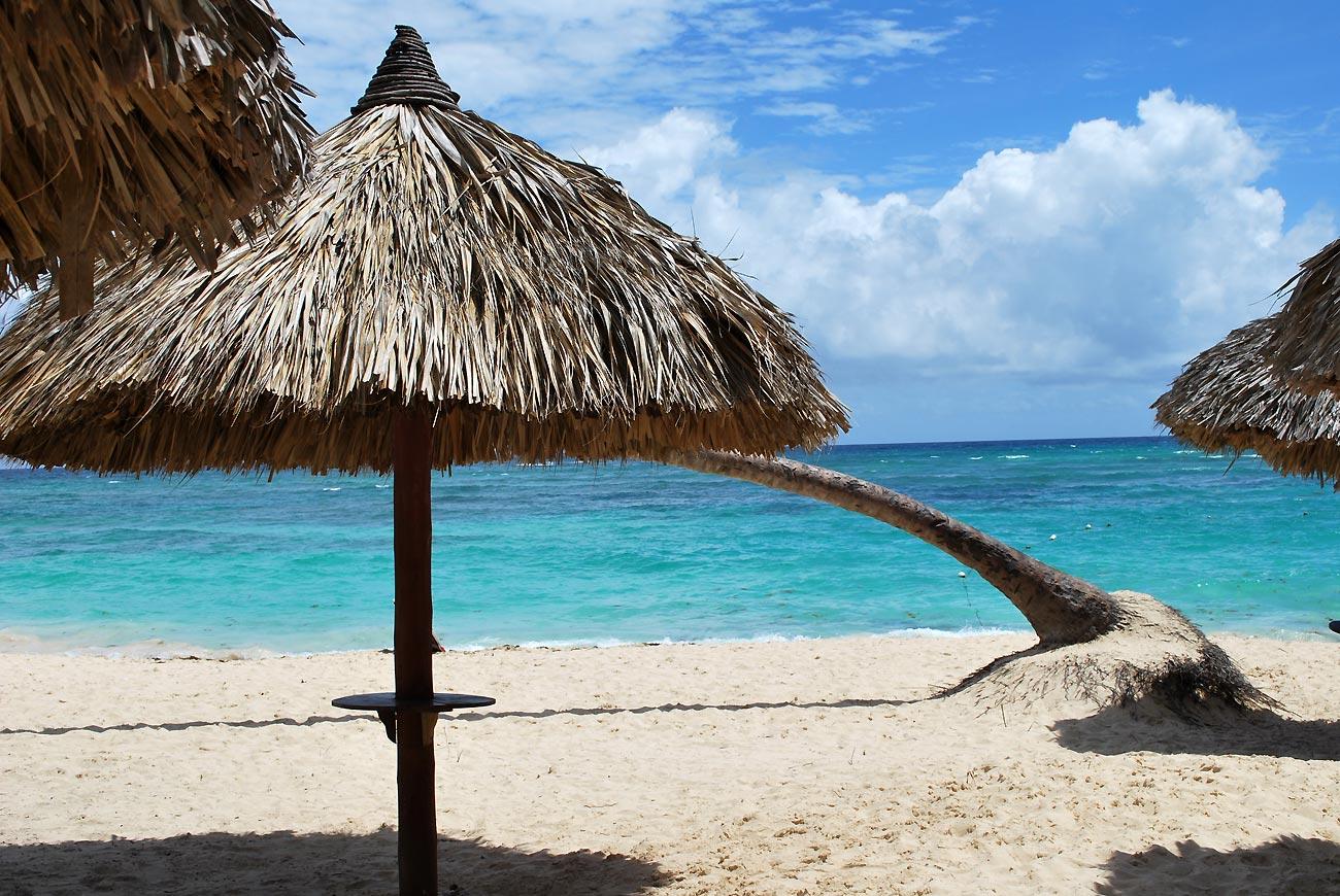 parasol on tropical beach