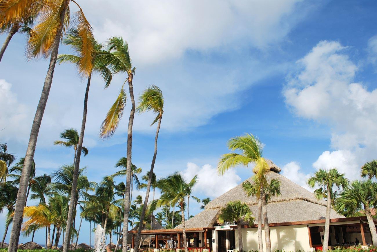 tropical palm house