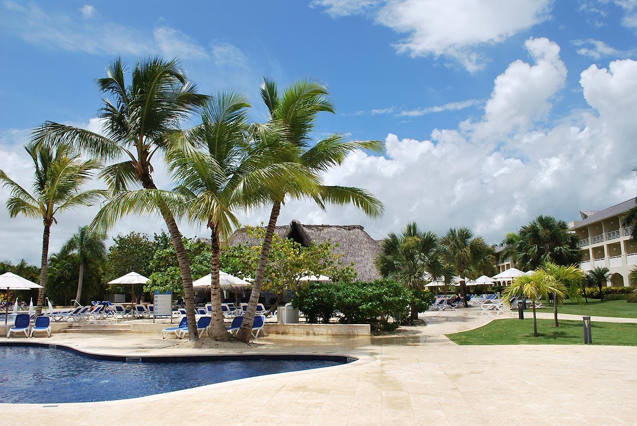 palms in resort