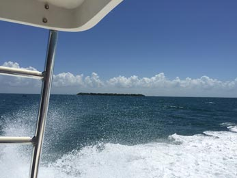 view from boat