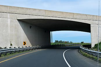 road under bridge