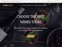 Wine Store WordPress theme - WS Wine