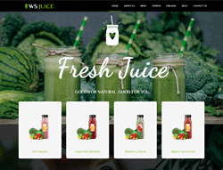 Smoothie WordPress Theme - WS Juice