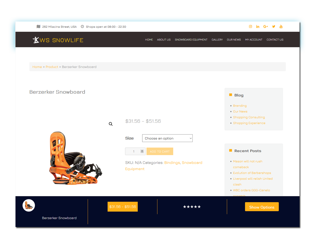 WS Snowboarding woocommerce wordpress Product Page