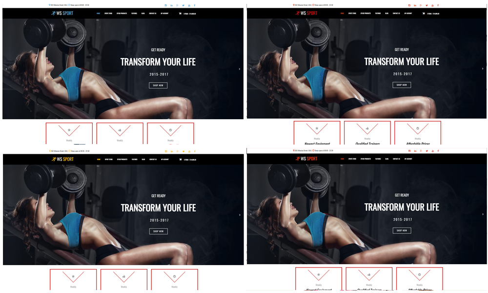 Fitness Equipment WooCommerce  Wordpress color layouts