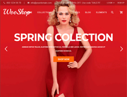 Fashion WordPress Theme - WooShop