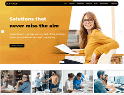 Financial WordPress theme - LT Finex