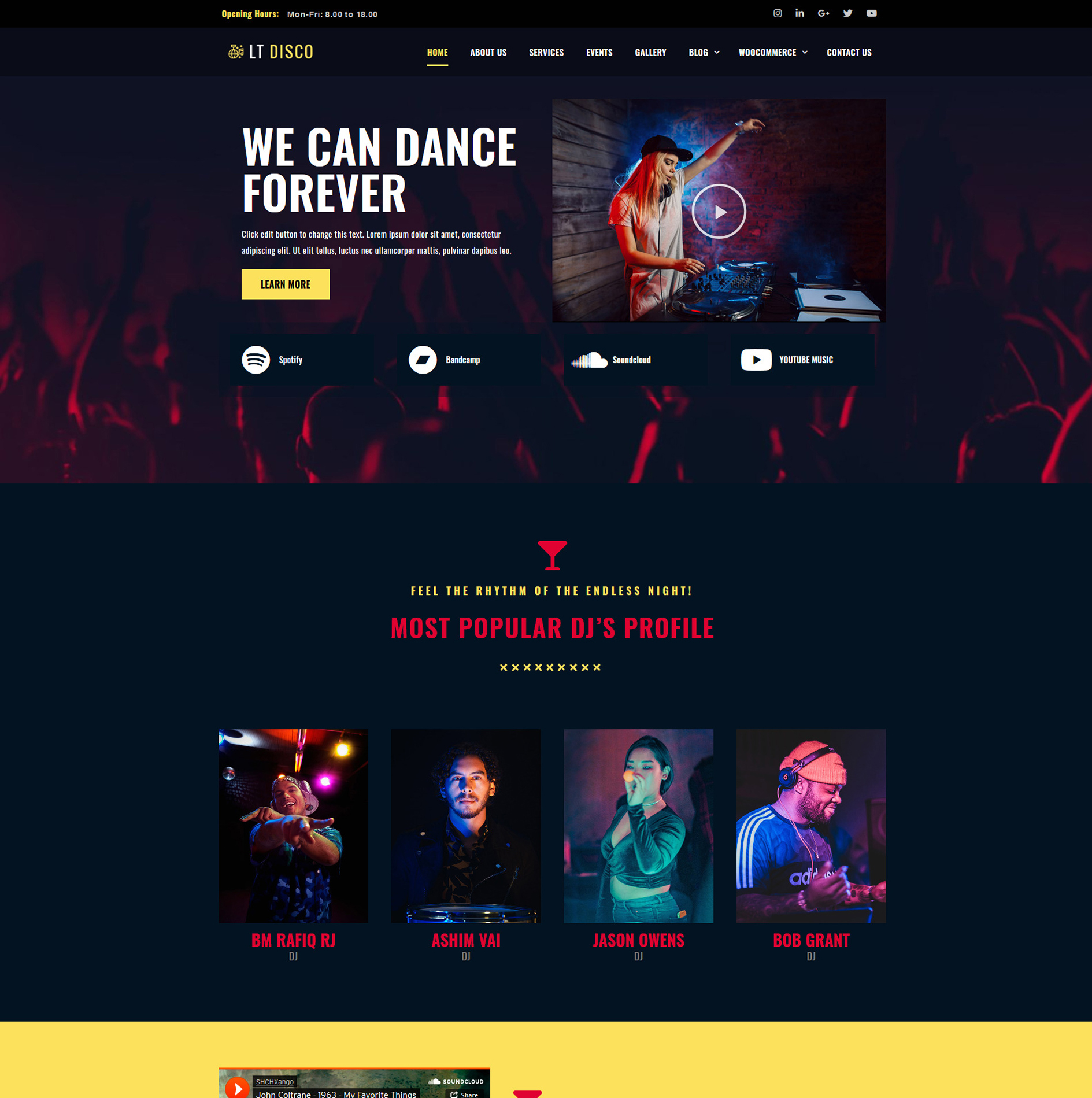 Dicso Wordpress theme