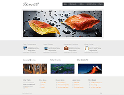 Joomla! 3 Template - Thematic PT
