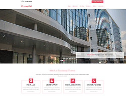 Top Website Template - E-Hospital