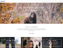 WordPress Theme - TM Shopite