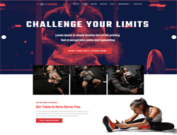 WordPress Theme - LT Fitness