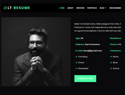 Wordpress Theme - LT Resume