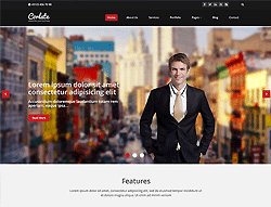 Top Website Template - Corlate