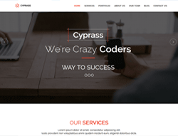 Top Website Template - Cyprass