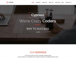 Html5 Responsive Business Template - Cyprass