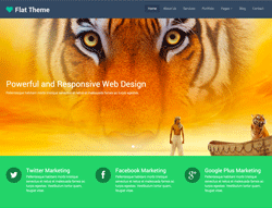 Responsive Multipurpose Website Template - Flat