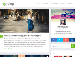 Minimal Blogging WordPress Theme - Prolog