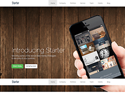 Onepage WordPress Theme - Starter