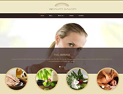 Beauty WordPress Theme - 006060