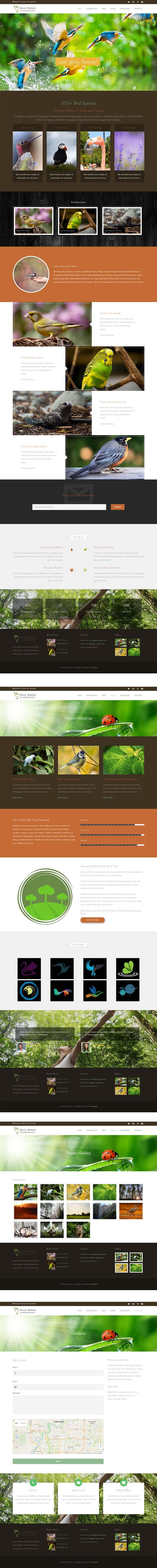 Bird Sanctuary Joomla! template