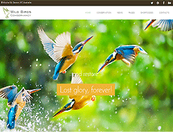 Responsive Joomla Template - PT Bird Sanctuary