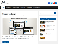 WordPress Template - Elicit