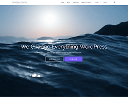 WordPress Theme - Shapely