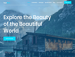 Travel Agency HTML Template - TourNest