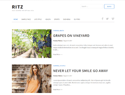 Blog WordPress Theme - Ritz