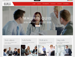 Business Joomla Template - TD Business