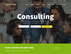 Business Wordpress Theme - Adviseme
